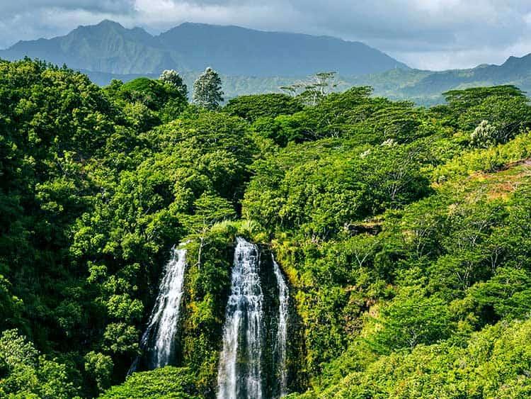 Opaekaa Falls Kauai Car Rental Kauai Car Rental